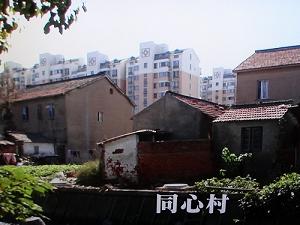 中国の水汚染 同心村